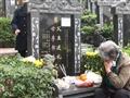 2014清明节祭奠