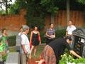 2015年8月16日忌日扫墓
